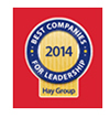 Best Companies for Leadership (Hay Group)